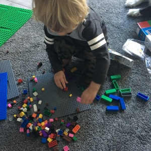 Toddler building with strictly briks