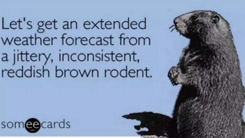 groundhog day funny
