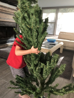 setting up the fake tree