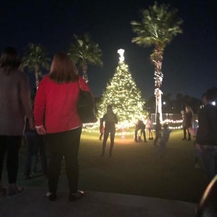 ABCC-holiday-tree-light (1)
