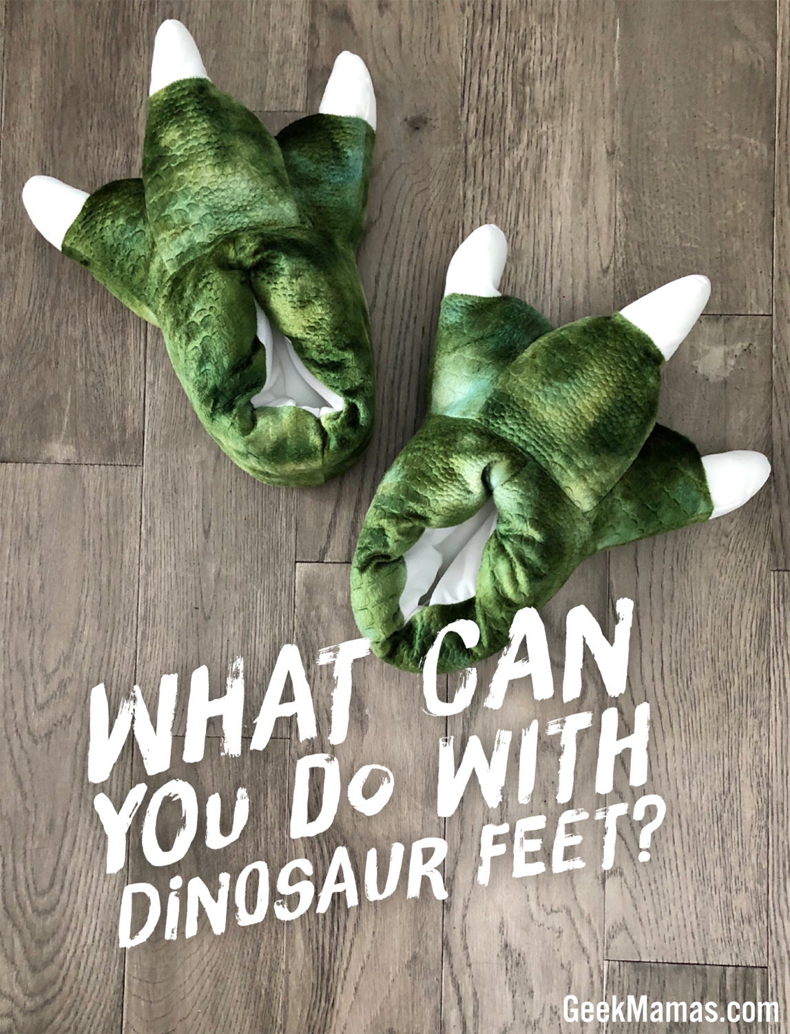what can you do with dinosaur slippers