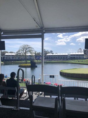 The 17th Hole at TPC Sawgrass