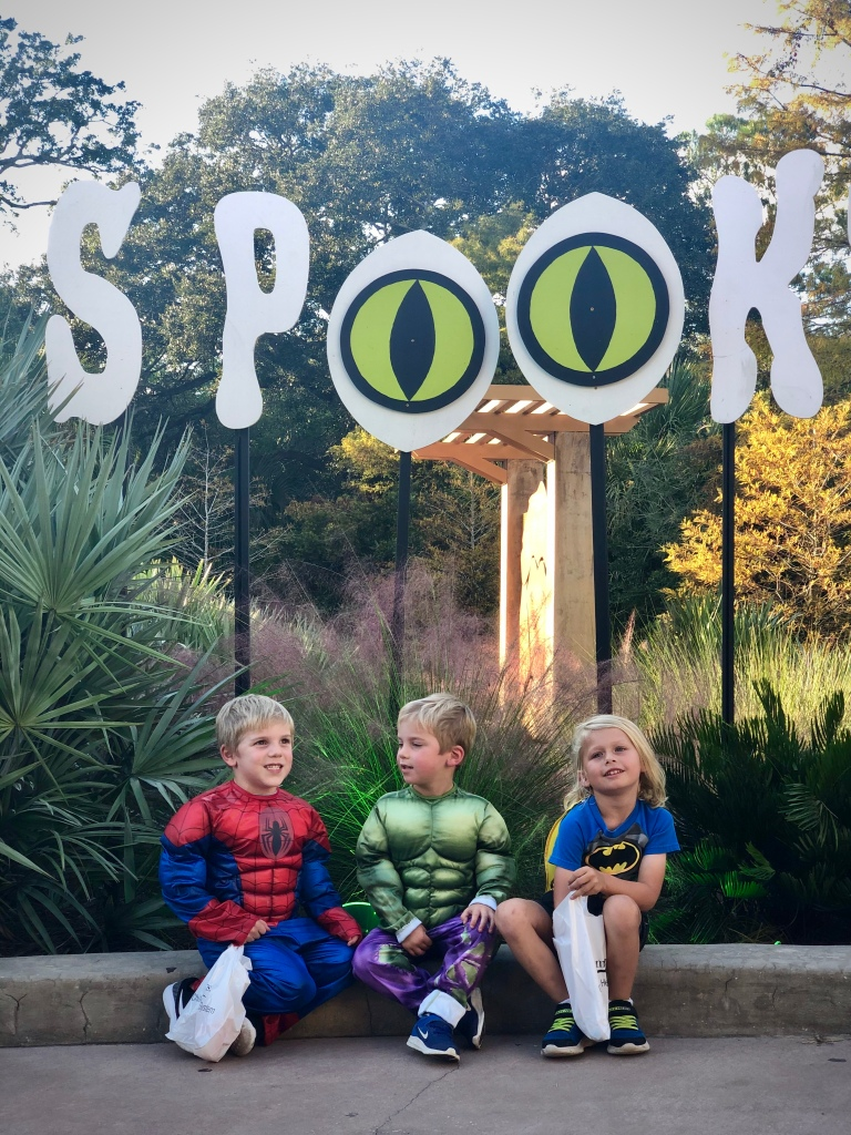 Spooktacular at jacksonville Zoo