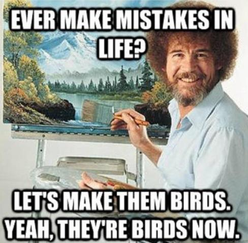 funny-picture-mistakes-in-life-birds