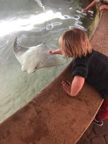 Jacksonville-Zoo (13)