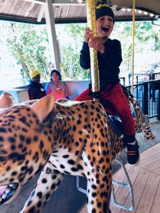 Jacksonville-Zoo (8)