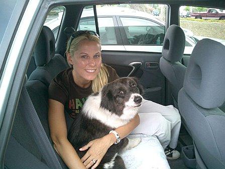 Bringing Sierra home after her adoption from Mini Aussie Rescue