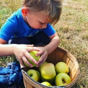 green-apples