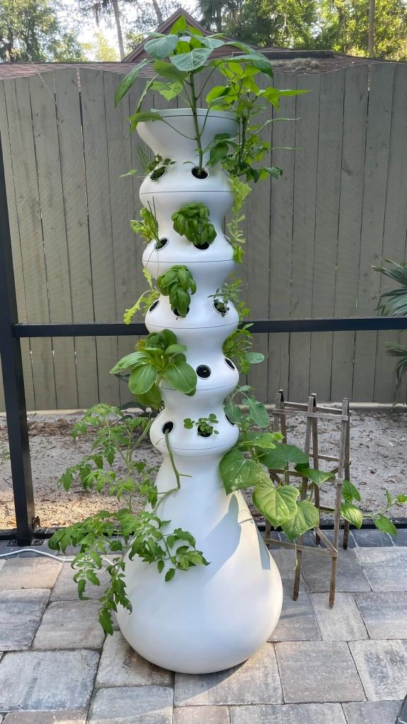 5 tier lettuce grow farm stand